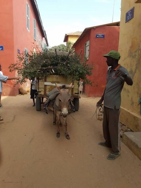 à l'ambiance des petites rues de Dakar.